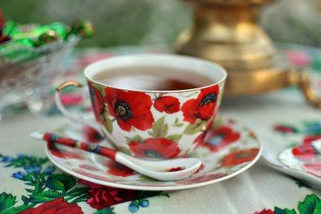 «В чае я души не чаю…» (о фотовыставке в музее Н.Г. Чернышевского)